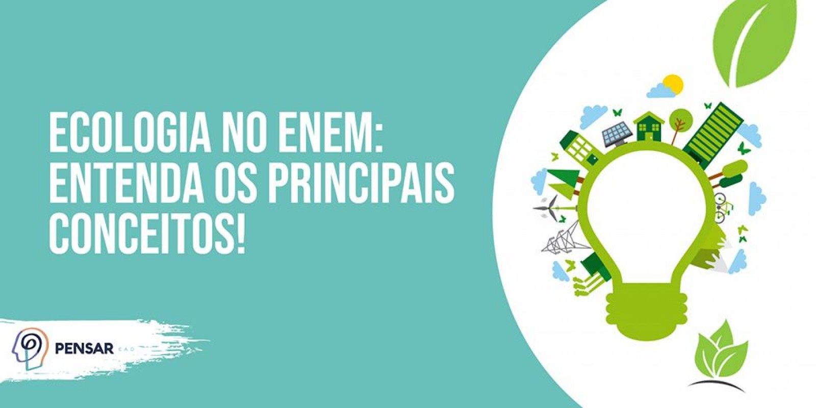 Ecologia no ENEM: entenda os principais conceitos!