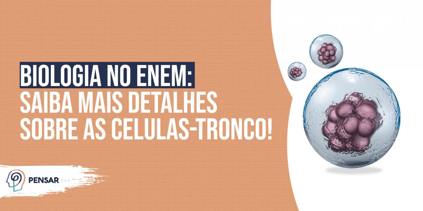 Biologia no ENEM: saiba mais detalhes sobre as células-tronco!