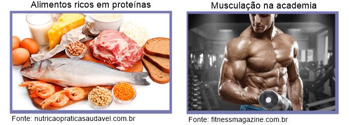 Bioquímica no ENEM: aprenda mais sobre os macronutrientes orgânicos!